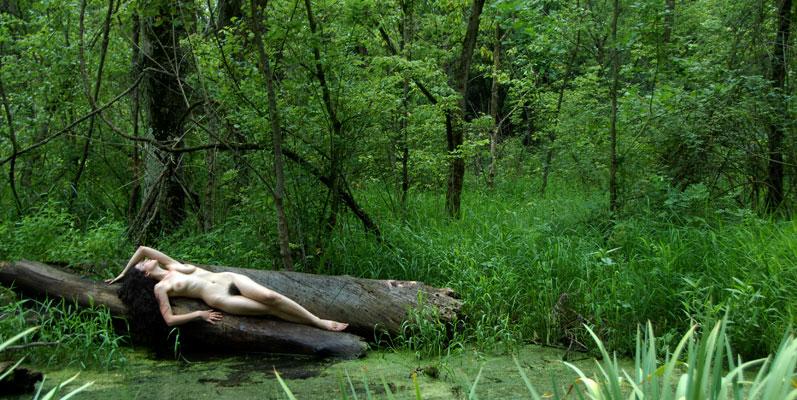 D20 4452 Swamp Thang