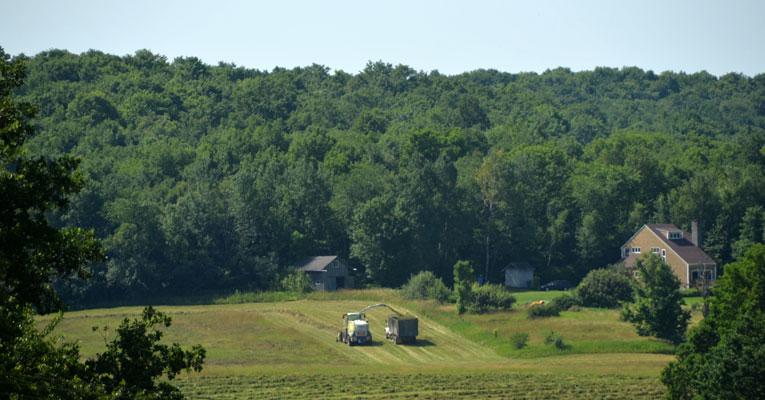 D70 4462 Vermont Farm and a Suspicious Odor